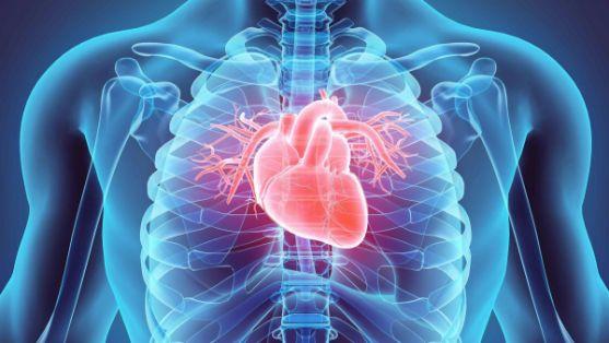 نقش تری سدیم فسفات در بیماری قلبی و عروقی