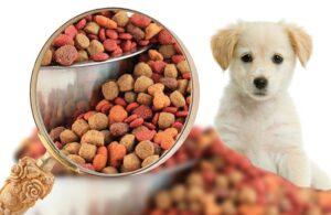 کاربرد مونو آمونیوم فسفات در غذای حیوانات