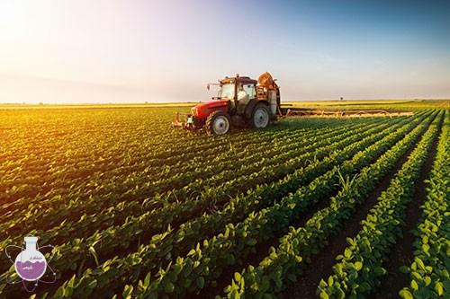 کلرید پتاسیم در کشاورزی