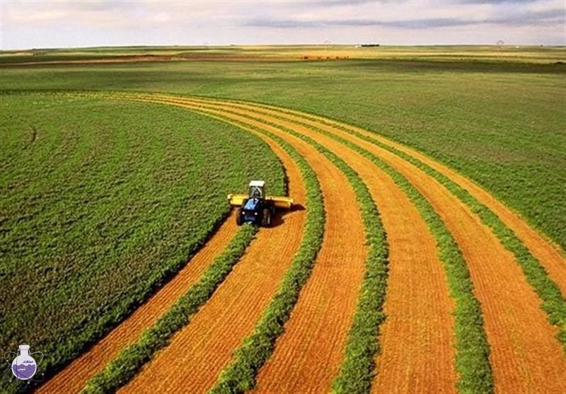 کود آمونیوم نیترات در کشاورزی