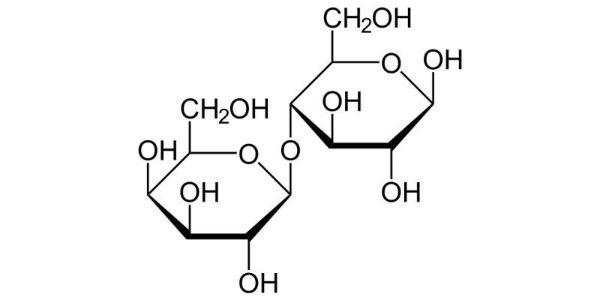 ساختار لاکتوز