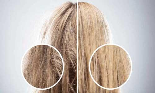 موی سالم و موی خشک آسیب دیده