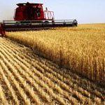 مواد صنایع کشاورزی