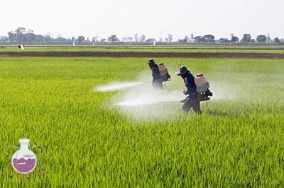 کاربرد زایلن در کشاورزی