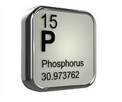 کود فسفر چیست ؟ | خواص کود فسفر بالا