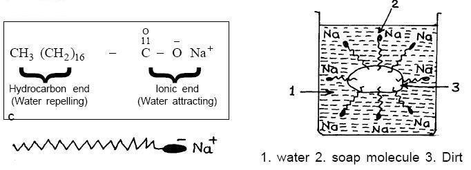 مواد سازنده صابون و شوینده