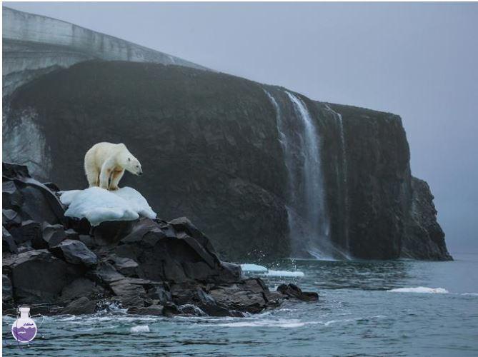 اثرات گرمایش جهانی