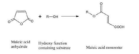 گام اول تولید مونو استر سولفوسوکسینات