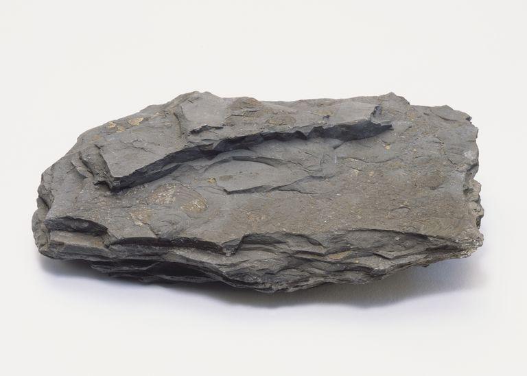 نمونه سنگ شیل