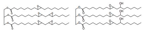 نمونه ای از رزین های اپوکسی با پایه ی زیستی تولید شده از روغن سویا و روغن کرچک