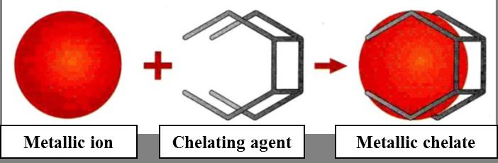نحوه عملکرد آمینو تری متیلن فسفونیک اسید