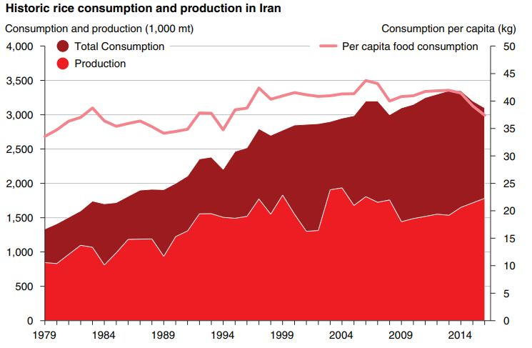 میزان تولید و تقاضای برنج