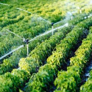 کیفیت آب آبیاری | EC آب کشاورزی | کیفیت خاک