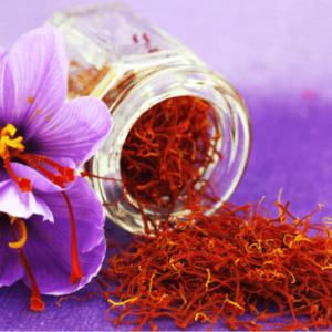 کوددهی زعفران | شرایط لازم برای کشت زعفران