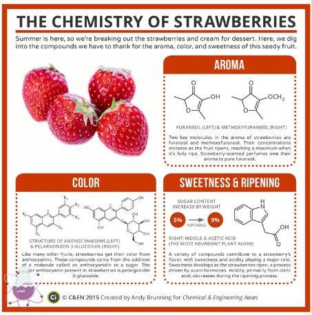 نقش شیمی در توت فرنگی