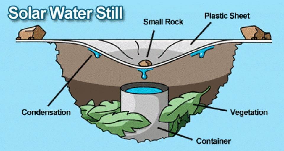 تولید آب مقطر با استفاده از گیاهان