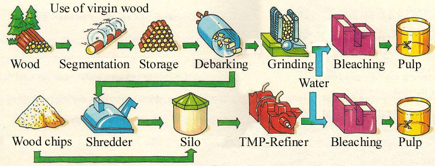 تولید خمیر کاغذ به روش مکانیکی و TMP